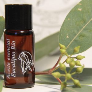 aceite esencial de eucalipto biológico