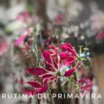 Rutina de primavera Kaptara Ori