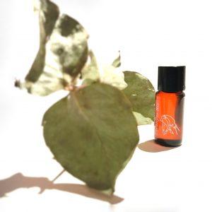 Essential one: aceite esencial de eucalipto
