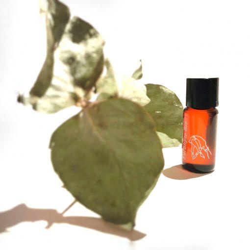 aceite esencial de eucalipto bio